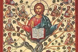Arbre de vie dans la bible